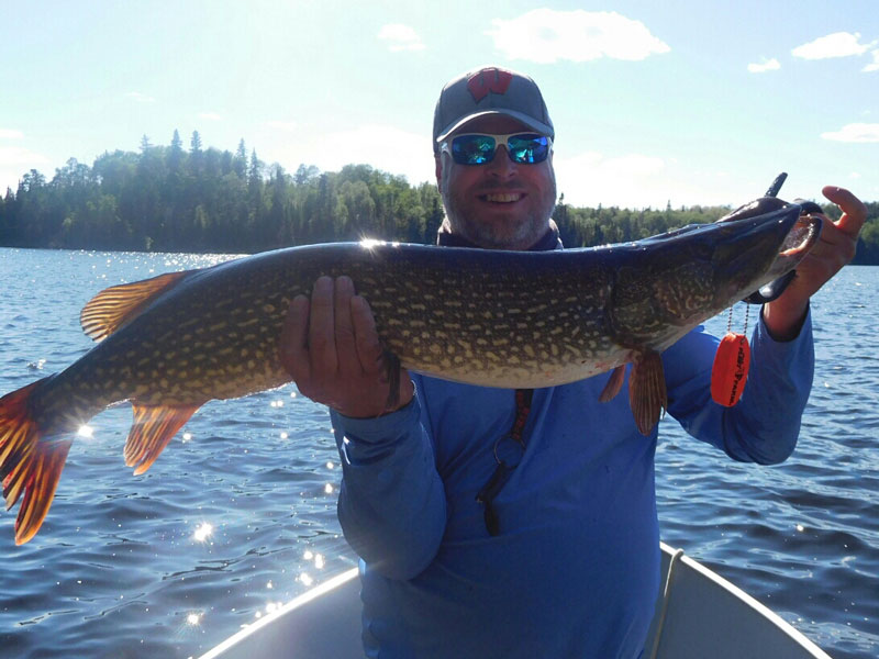 Canada Trophy Northern Pike