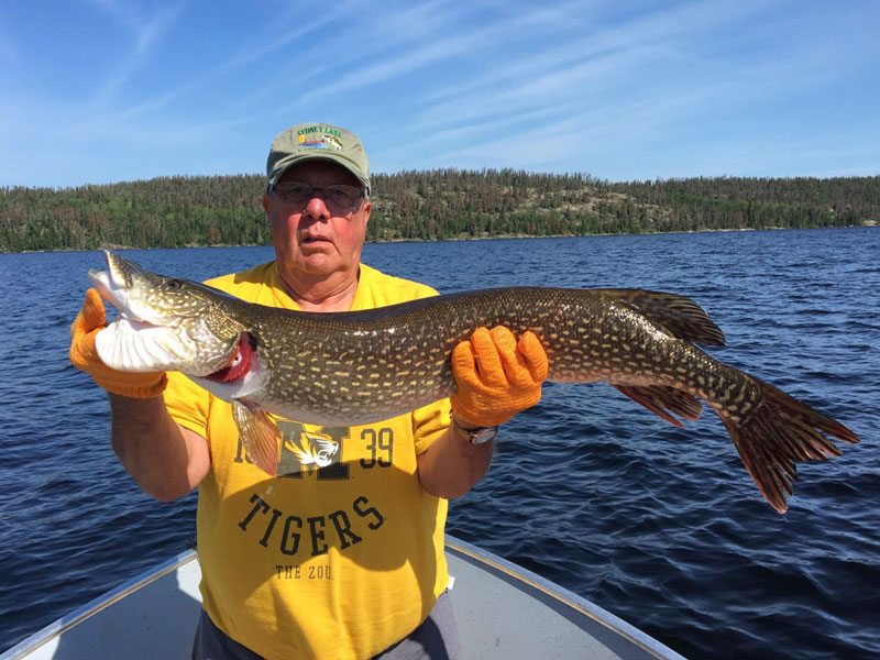 Northern Ontario Pike Fishing