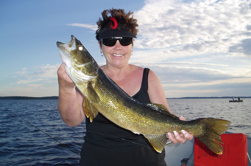 Trophy Walleye