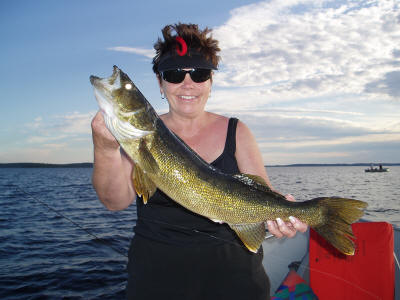 28.5 Inch Walleye Caught by Lynnette Alderman!
