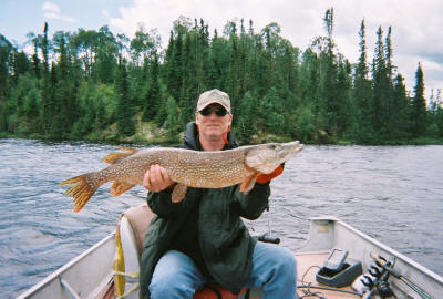 44 inch northern pike trophy caught by Perry Judd.